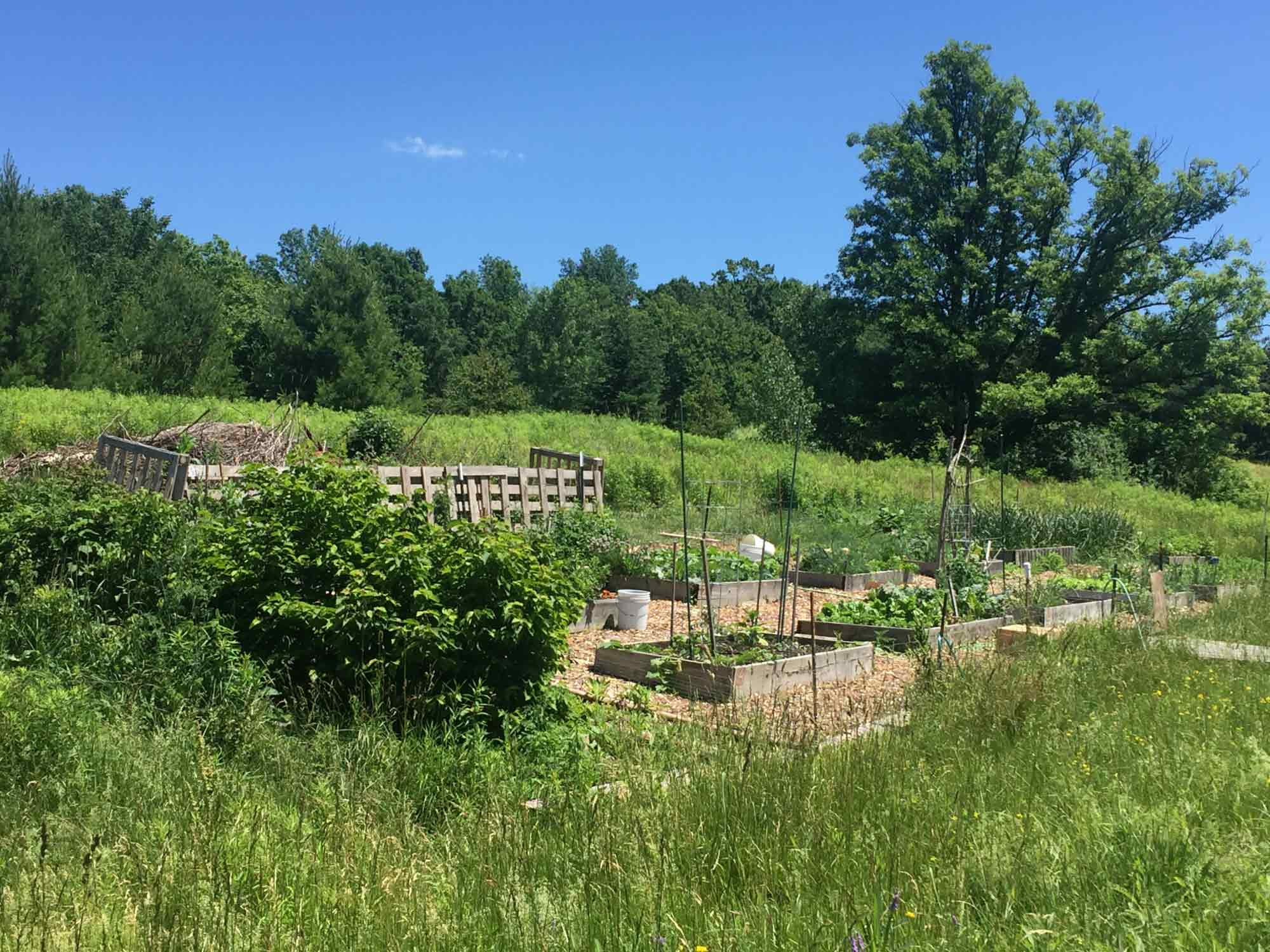 Community Garden at Champlain Valley Cohousing